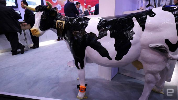 Fujitsu's EDSC wearable for cows