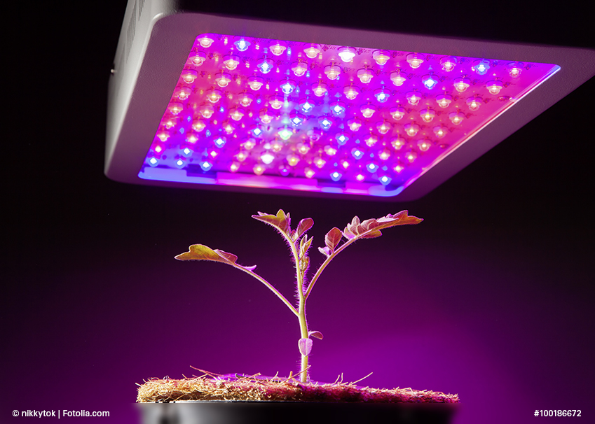 Horticultural Led Lighting Market in 360researchreports.com